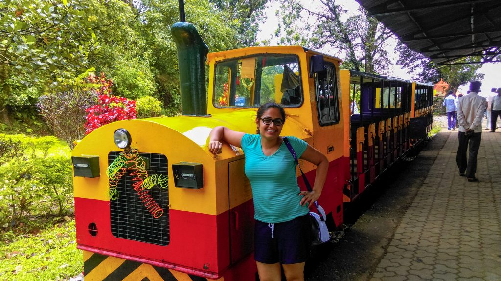 Toy train in Coorg